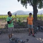 cycling wine excursion